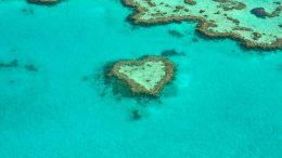 Coral Bleaching, Climate Change, Marine News, Marine Environment, Global warming,